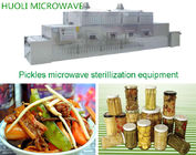 Automated Food Sterilization Equipment Microwave Food Drying Machine